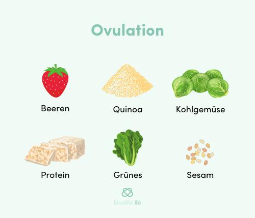 Ernährung in der Ovulation