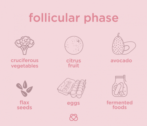 nutrition during follicular phase