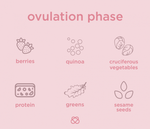 nutrition during ovulation